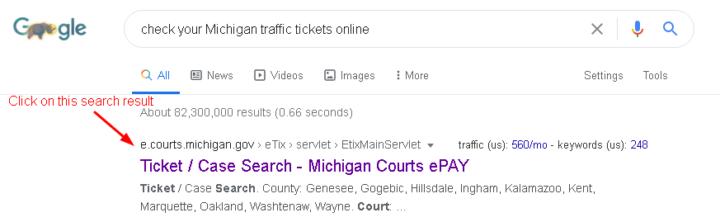 Check Michigan traffic ticket online google results tab