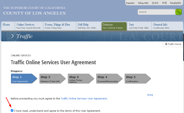 Pay LA traffic ticket online services page