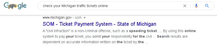 State of Michigan Ticket Payment System google search results